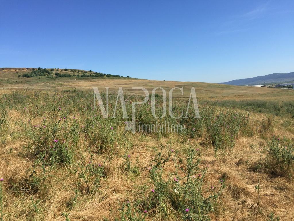 Teren extravilan agricol de vanzare in Jucu, Jucu