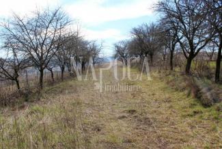 VT 103039 - Land urban agricultural for sale in Sopor, Cluj Napoca