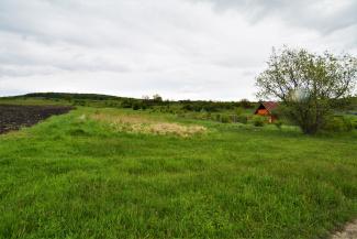 VT 106439 - Teren extravilan pentru constructii de vanzare in Dambul Rotund, Cluj Napoca