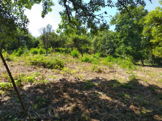 VT 107866 - Land urban for construction for sale in Gheorgheni Sat, Gheorghieni