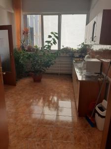 VSC 108459 - Commercial space for sale in Zorilor, Cluj Napoca