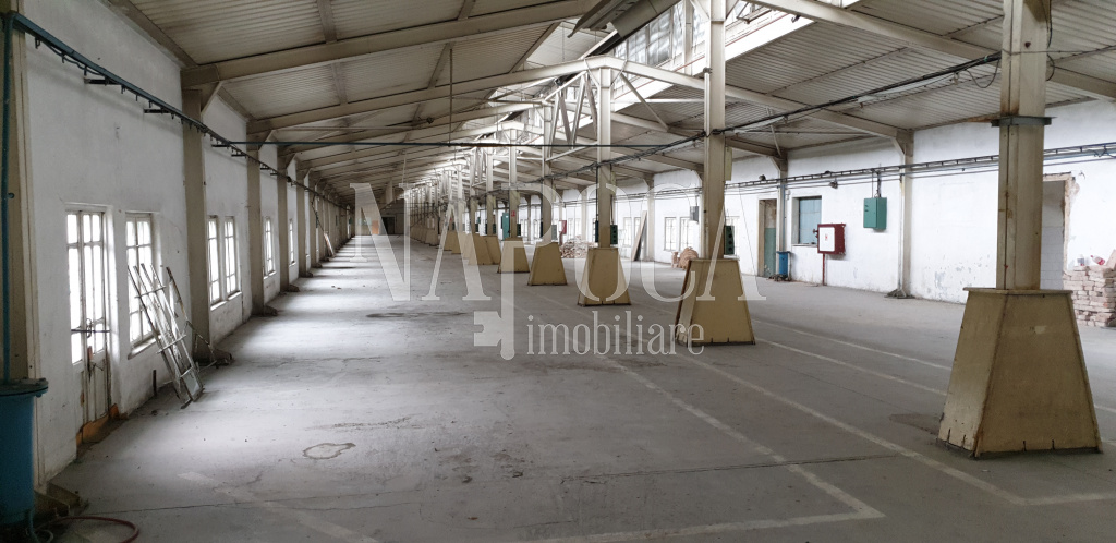 ISPI 83451 - Industrial space for rent in Marasti, Cluj Napoca