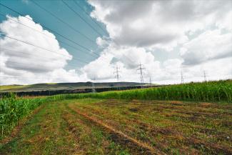 VT 86760 - Teren intravilan agricol de vanzare in Floresti